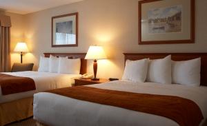 nikkibabie_comfort_hotel_victoria